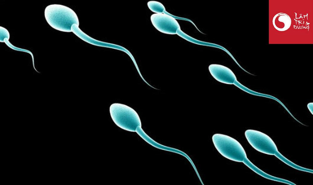 Viêm nhiễm đường sinh dục làm giảm lượng tinh trùng ở nam giới
